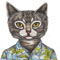 The cat in the hawaiin shirt